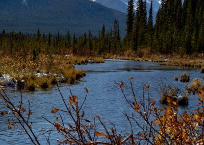 Landscape Banff-1625-4