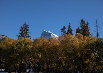 Landscape Banff-1767-10